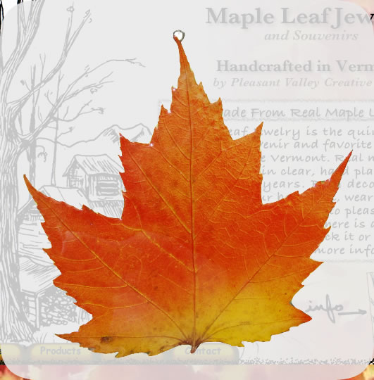 Maple Leaf Suncatcher